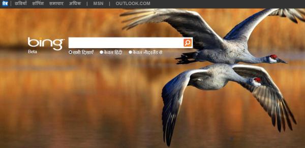 Bing interface in Hindi