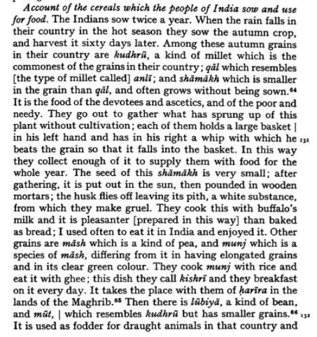 Ibn Batuta on Khichdi